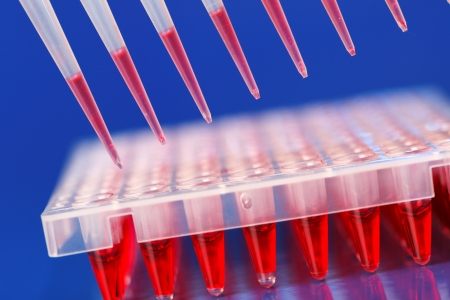 throughput: Well plate and multichannel pipette, tools for high throughput DNA analysis by PCR
