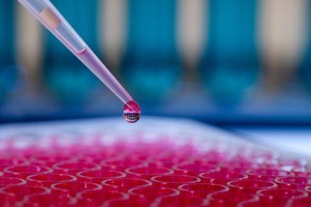 Pipette with drop of liquid in a chemical laboratory