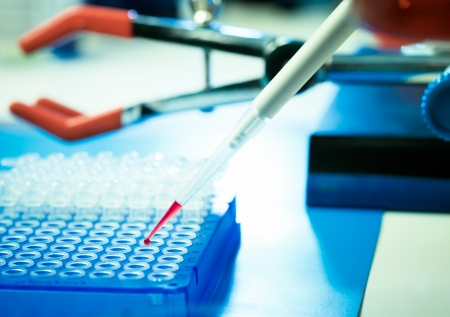 food safety: Food quality control Stock Photo