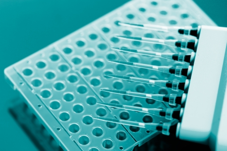 eppendorf: Multichannel pipette  and  multiwell eppendorf plate Stock Photo
