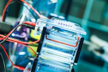 electrophoresis: Build a gel electrophoresis chamber Stock Photo