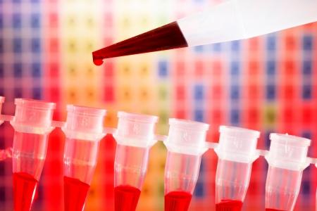 micropipette: DNA research, PCR strip and micropipette Stock Photo