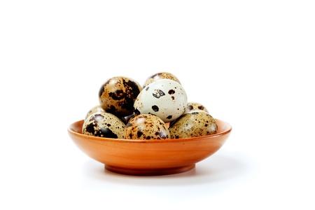 origen animal: Huevos de codorniz en un plato aislado en blanco