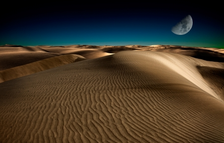 moon  desert: Night in the desert sand dunes