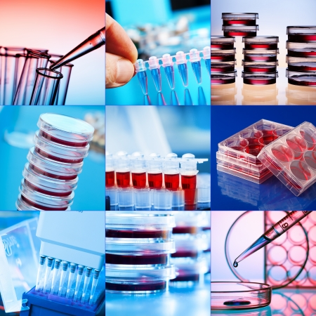medical testing: Collage of clinicians studying microbiology genetics in laboratory