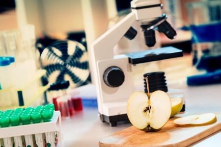 Laboratorio de Química de la alimentación / control de los alimentos la cantidad de nitratos, herbicidas y pesticidas Foto de archivo - 18982111