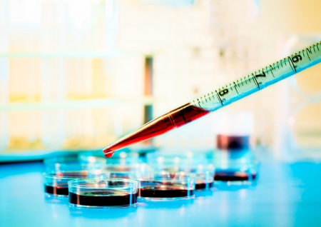 medical research: pipette and petri dish Stock Photo