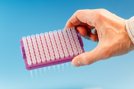PCR multiwell plate in hand photo