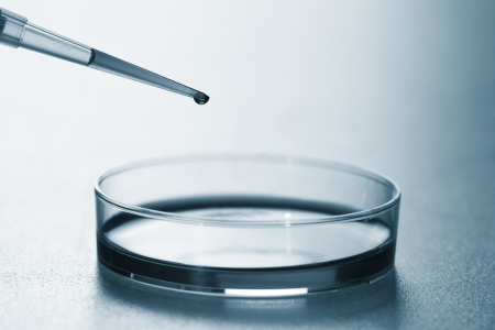 pipette and petri dish Stock Photo