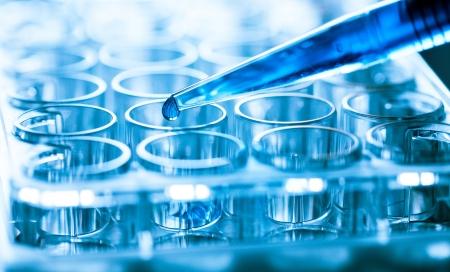 pipeta microbiológico en el laboratorio de genética