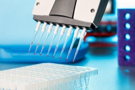 multiplicacion: m�ltiples pipeta para una reacci�n de PCR multiplicaci�n