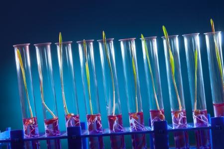 Laboratorio Químico. Controlar la cantidad de nitratos, herbicidas y pesticidas