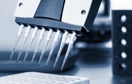micropipette: micropipette laboratory for DNA analysis, pipette Stock Photo