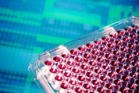 multiwell genetic samples Stock Photo