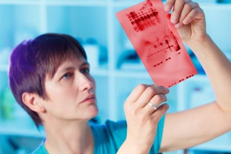 chromatografie genetische vingerafdrukken Stockfoto