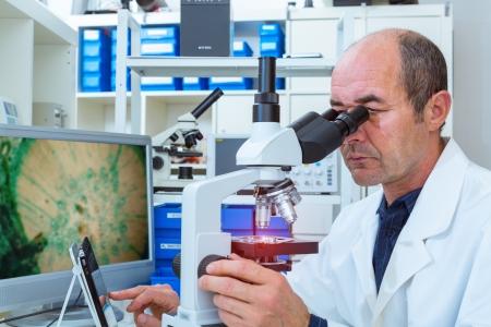 biopsia: científico examina muestras de biopsia