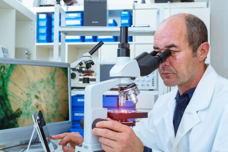 scientist examines biopsy samples photo