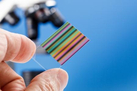 genetica: cromatografia fingerprinting genetico Archivio Fotografico