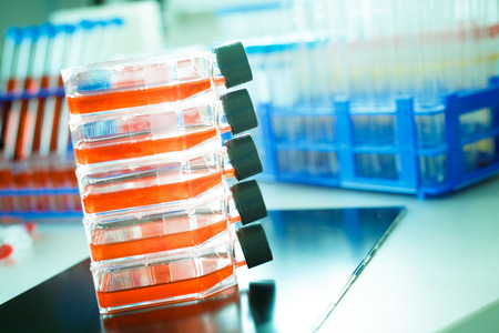 Containers of cell cultures for gene therapy