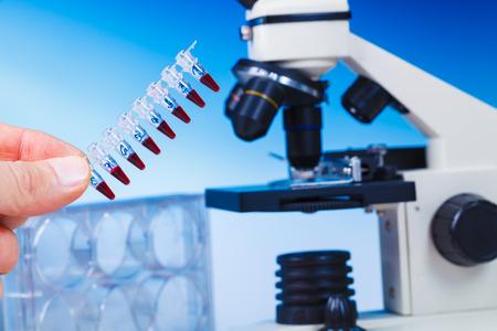 pcr: pcr strip and biological microscope