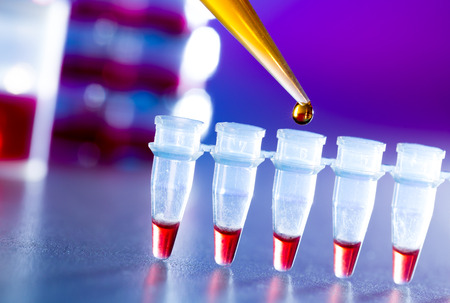 food research: reprogenetics research in the laboratory, test tubes and pipette Stock Photo