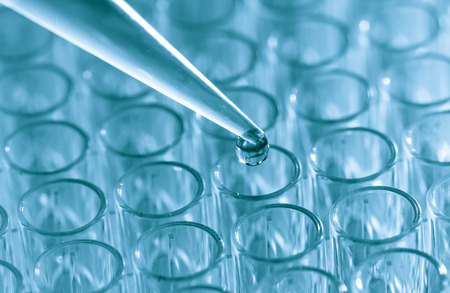 pcr: Pipette  load samples in the PCR plate