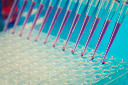 sequencing: Multipipette  load samples in the PCR plate