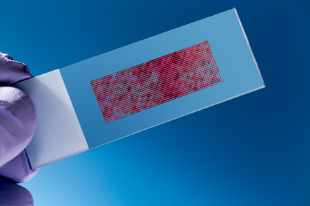 mutation: DNA microarray, DNA chip or biochip,  array of nano DNA spots attached to a glass surface to measure  levels of large numbers of genes