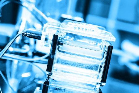 Build a gel electrophoresis chamber Stock Photo