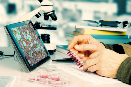 fingerprinting: Workplace in the laboratory of genetic research Stock Photo