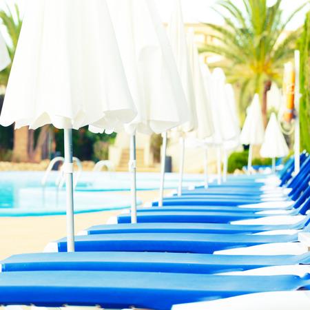 sunbeds: sunbeds around the pool
