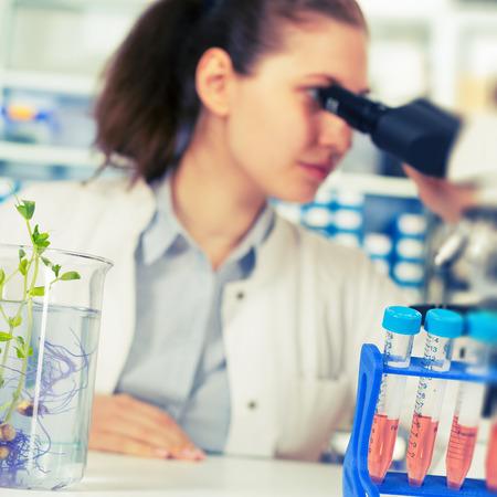 genetica: Donna nel laboratorio di Genetica Vegetale