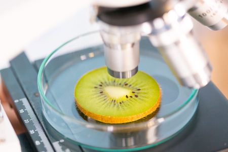 kiwi fruit in a laboratory microscope photo