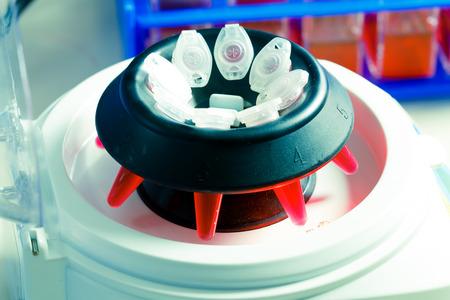 centrifuge: PCR tubes in centrifuge