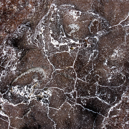 black onyx: veins on the stone texture Stock Photo