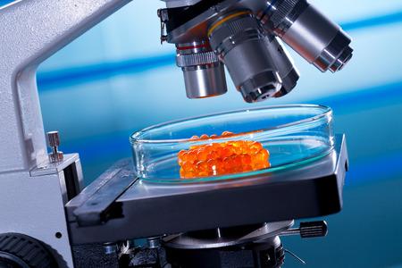laboratory of food quality tests caviar photo
