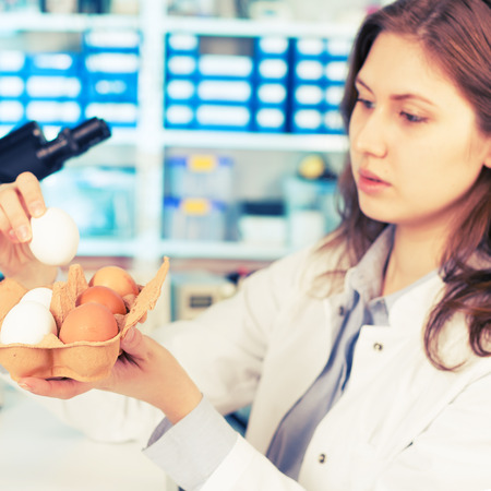 girl in the laboratory testing of food quality egg. Check the content of protein, fat, cholesterol and pathogens photo