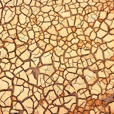 sequias: suelo agrietado durante la sequ�a