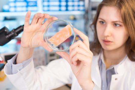 microbiologia: Técnico de la mujer en el laboratorio pone a prueba la calidad de los alimentos