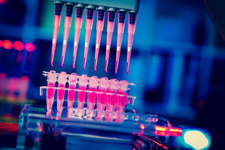 ZELLEN: Multipipette Forschung von Krebsstammzellen