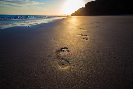 homo: footprints Homo sapiens , people  in the sand