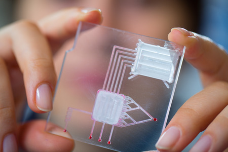 biomedical: A lab on chip is device integrates several laboratory processes in one device, in woman hand Stock Photo