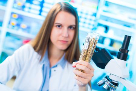 modificaci�n: Las diferentes variedades de lentejas en una cr�a de laboratorio y la modificaci�n gen�tica