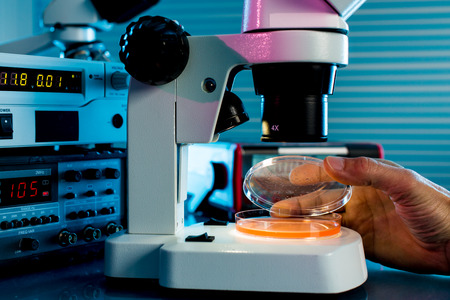 Petri dishes and microscope in the laboratory