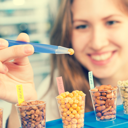 test glass: Technician In the laboratory tests the quality of grains and beans