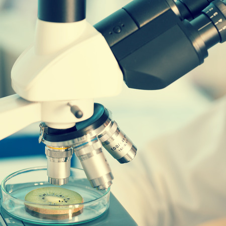 food research: technician in the laboratory using a microscope Stock Photo