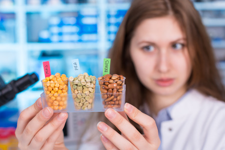 food testing: Research seed in Laboratory