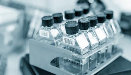 coronavirus: workbench in microbiological laboratory