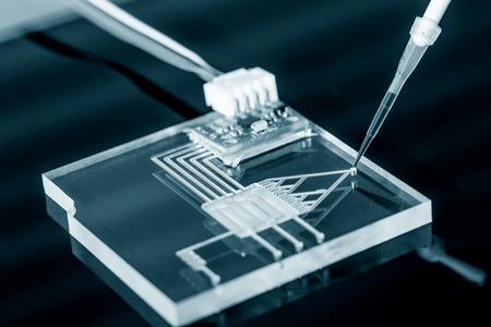 Un laboratorio su chip è dispositivo integra diversi processi di laboratorio in un unico dispositivo, soprattutto LOC basato su lastra di vetro. Archivio Fotografico - 45986620