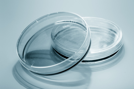 petri dish: blank petri dish isolated on blue Stock Photo